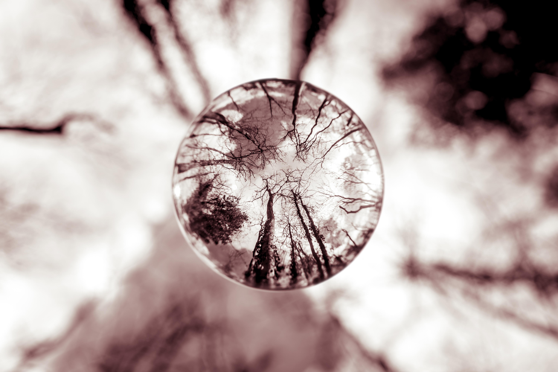 Faire de belles photos avec une Lensball?