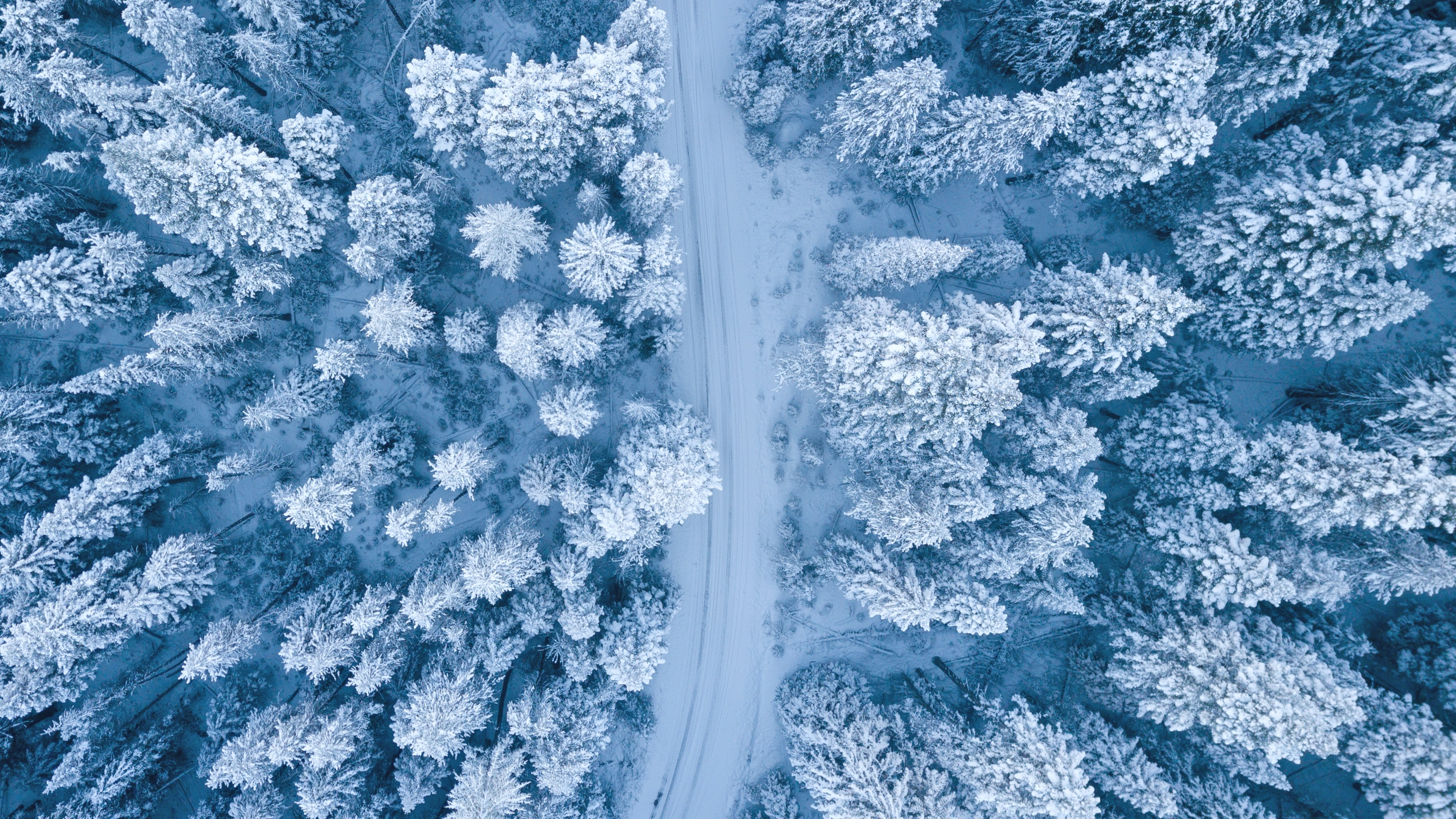 Comment faire de belles photos de l'hiver ?